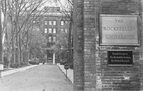 Rockefeller U Campus