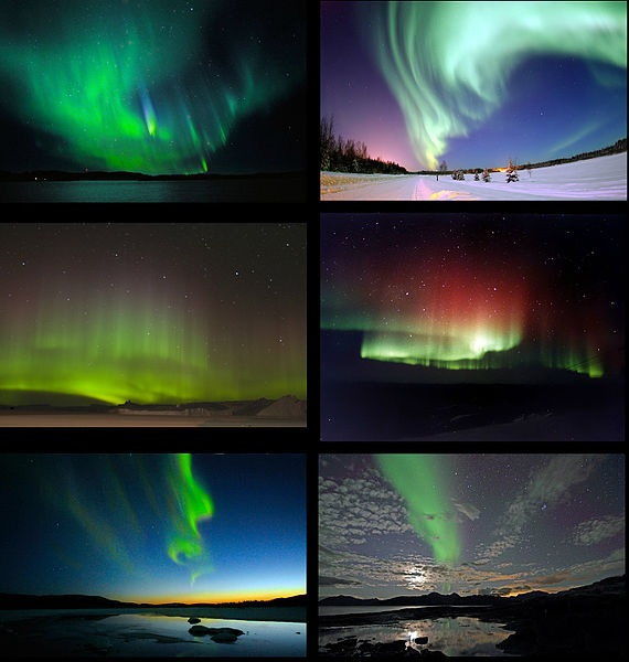 Auroras from around the world