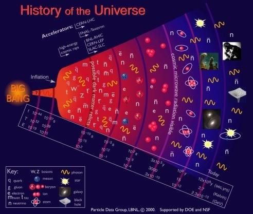 Quark gluon plasma. Duke University