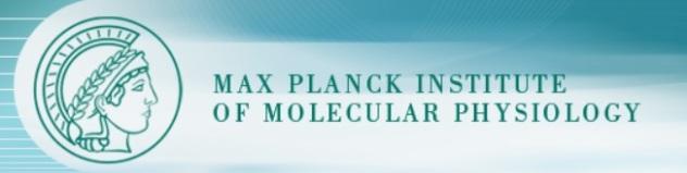Max Planck Institute of Molecular Physiology bloc