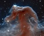 Horsehead Nebula Credit NASA/ ESAHubble